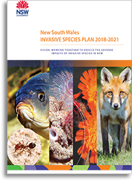 Invasive species plan 2018-2021