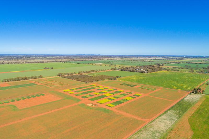 Aerial view of Condo ARAS