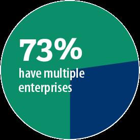 73% have multiple enterprises