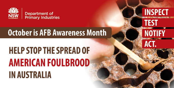 October is AFB Awareness Month - help stop the spread of American Foulbrood in Australia