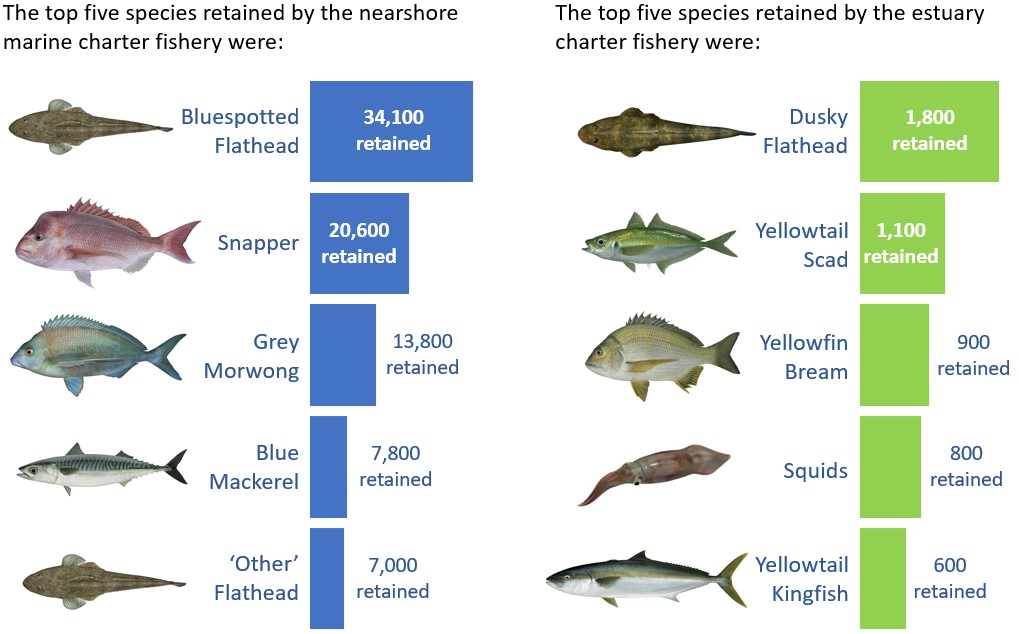 Top 5 species taken by the Nearshore Marine Charter Fishery and Top 5 species taken by the Estuary Charter Fishery state-wide