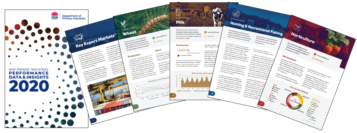 Pages from PDI 2020 Booklet