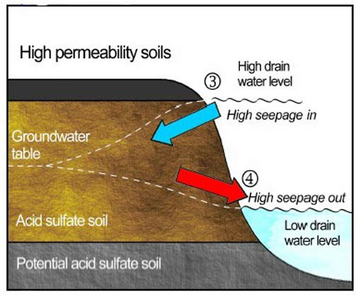 Figure 3. Groundwater flow and groundwater/drain water level relationships in high permeability ASS. 3 shows a high drain water level (i.e. from floodgate opening) and high seepage away from the drain into the ground. 4 shows a low drain water level and high seepage of groundwater towards the drain.