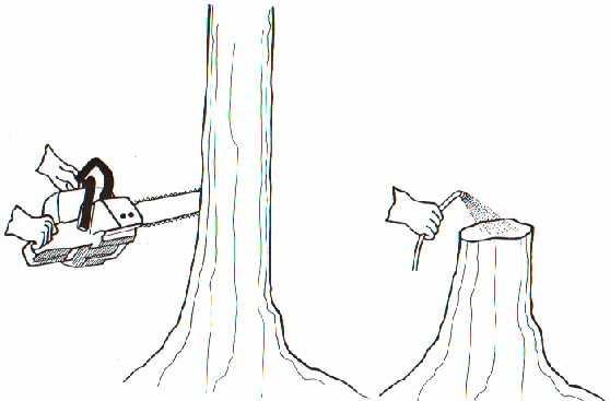 cut stump method