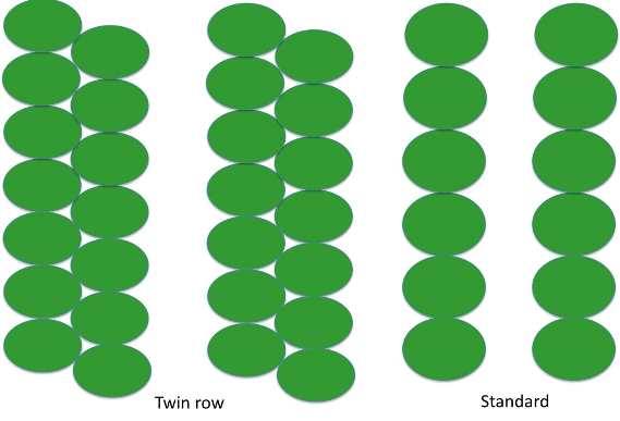 Twin row planting layout