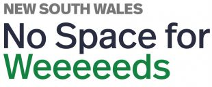 No space for weeds logo
