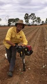 man sampling in cotton field