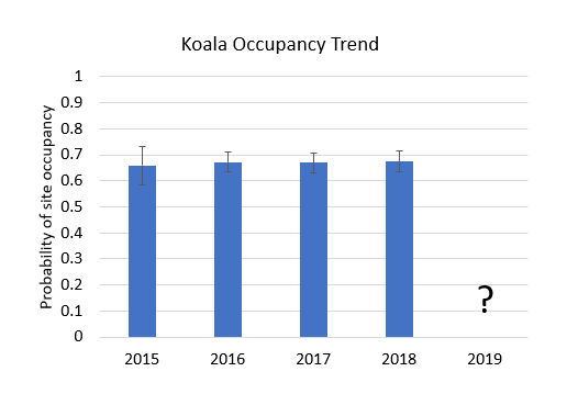 column graph showing koala occupancy trends