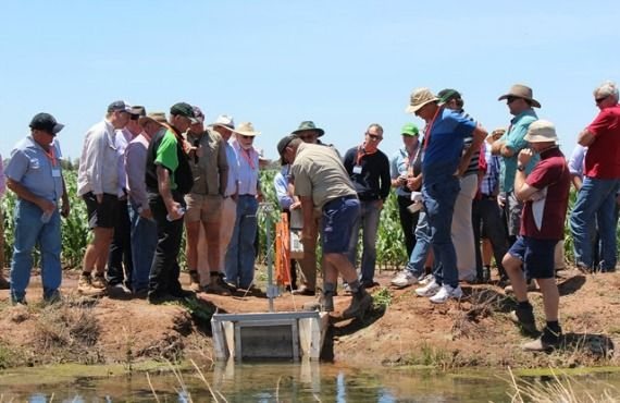 Participants watching a pipe through the bank and gate being opened on the 2015 CottonInfo Irrigation Technology tour