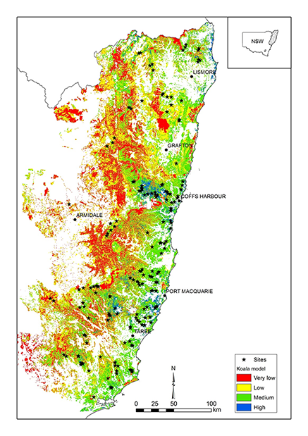 map showing a  koala habitat model for northeast NSW