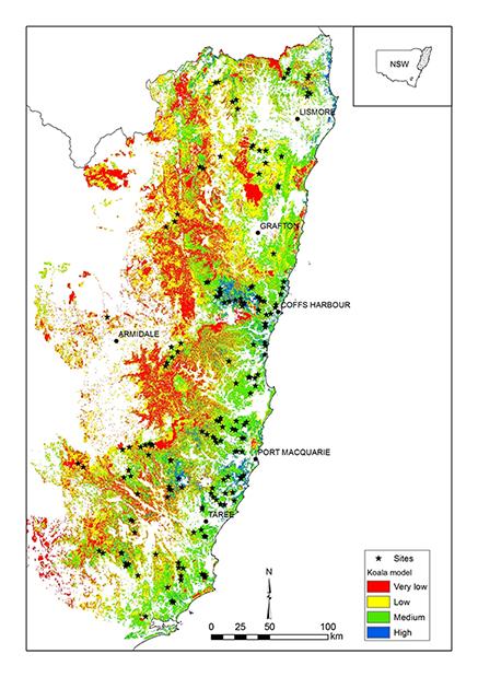 map showing a  koala habitat model for northeast NSW