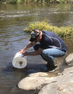 Trevor Daly releasing Southern Purple Spotted Gudgeon into Tenterfield Creek.