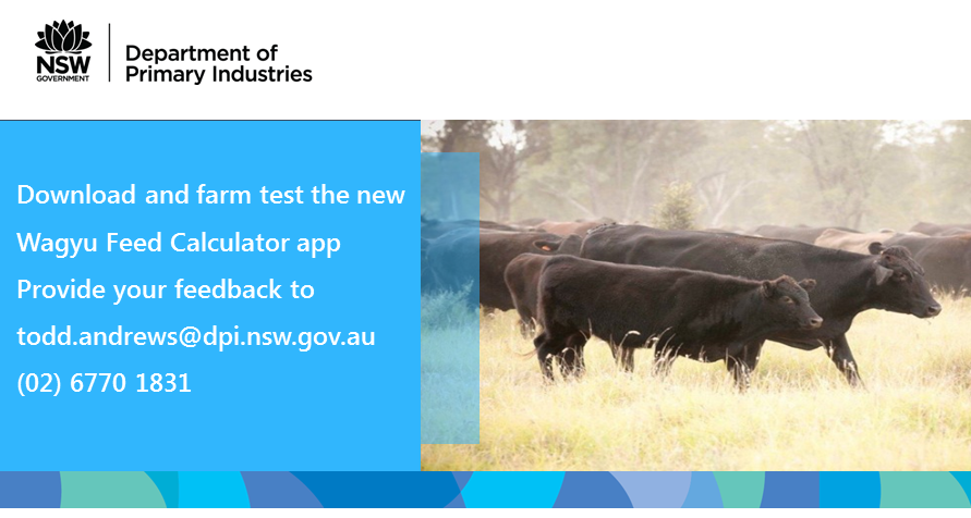 Download and farm test the new Wagyu Feed Calculator app. Provide your feedback to todd.andrews@dpi.nsw.gov.au (02) 6770 1831.