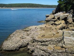 Shiprock Aquatic Reserve