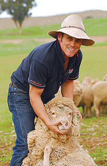 Farmer with tagged sheep