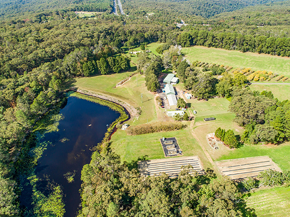 Aerial view of Ourimbah research station