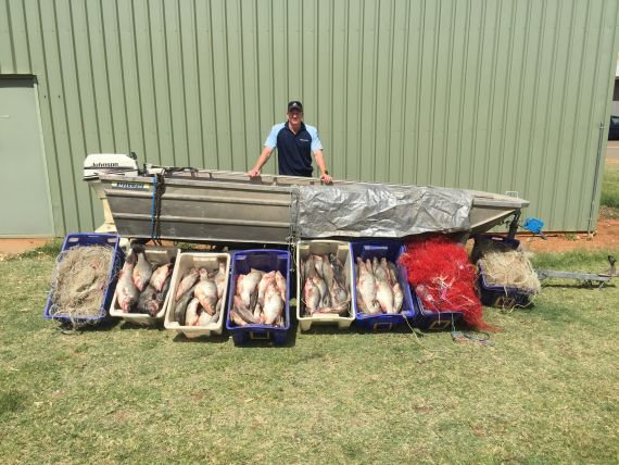 Image of fish, nets and vessel seized from offender in South Western NSW