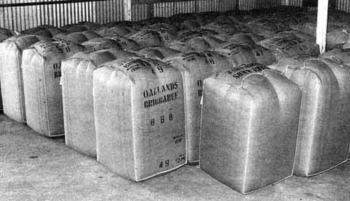 Wool bale storage area