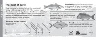 Fish habitat signage, Burrill Lake