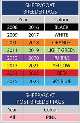 Sheep and goat breeder tag colours
