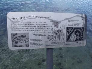 Fish habitat signs along an interpretative trail around Wagonga Inlet, Eurobodalla Shire