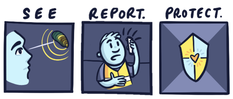 See, report and protect