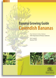 Cover of the Cavendish bananas growing guide